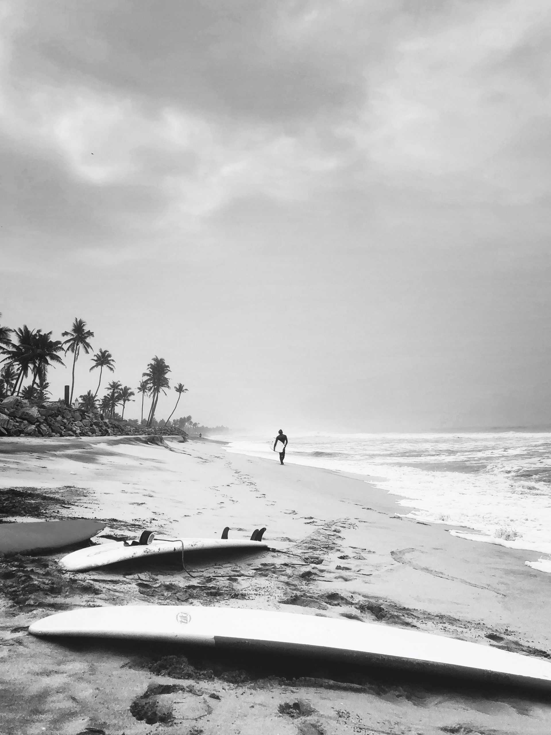 surf in india