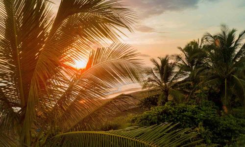 Surfing Costa Rica: The Essential Guide